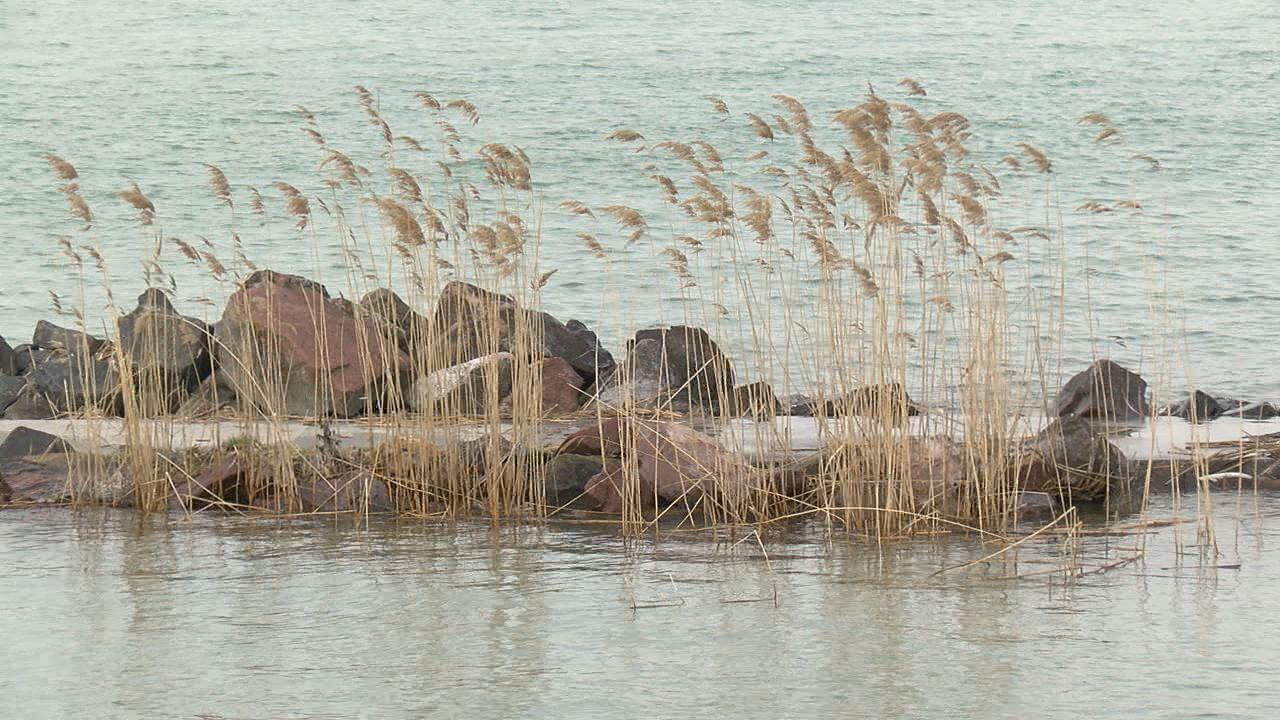 Több mint tíz éve nem volt ilyen magas a Balaton vízállása